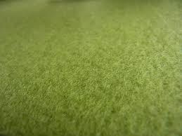 Zöld szőnyeg a Dizon webáruházban